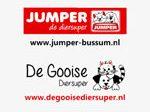 jumper - bussum